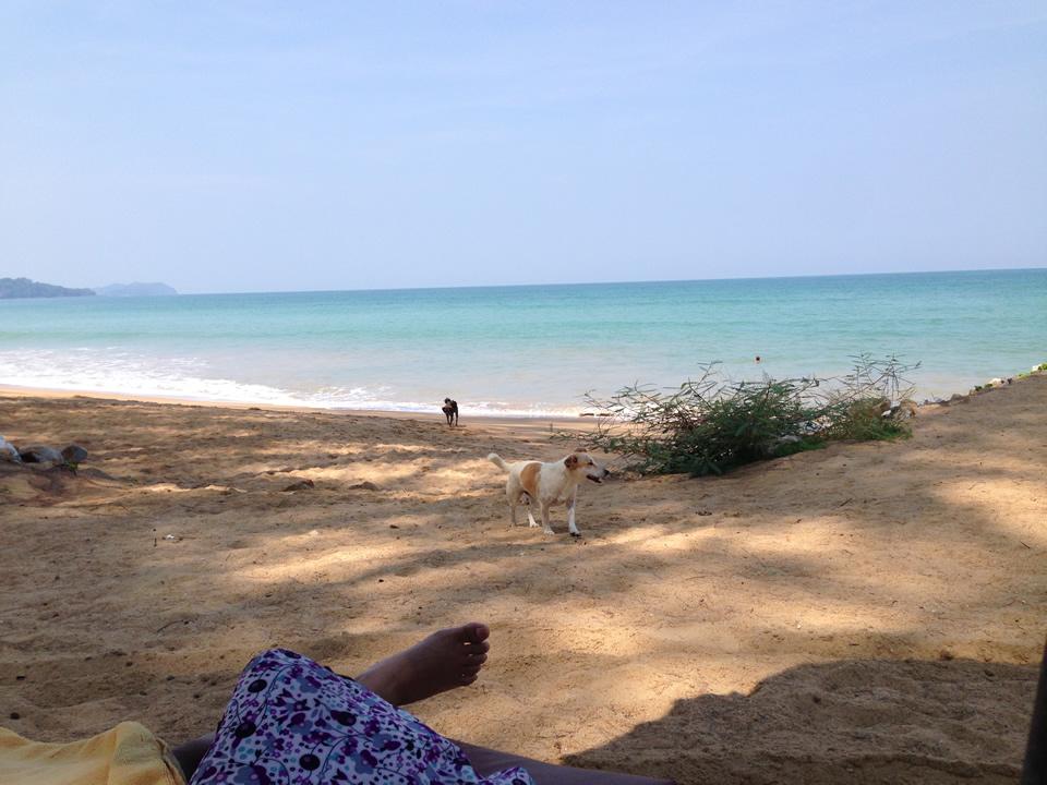 khaolak-sudara-beach2